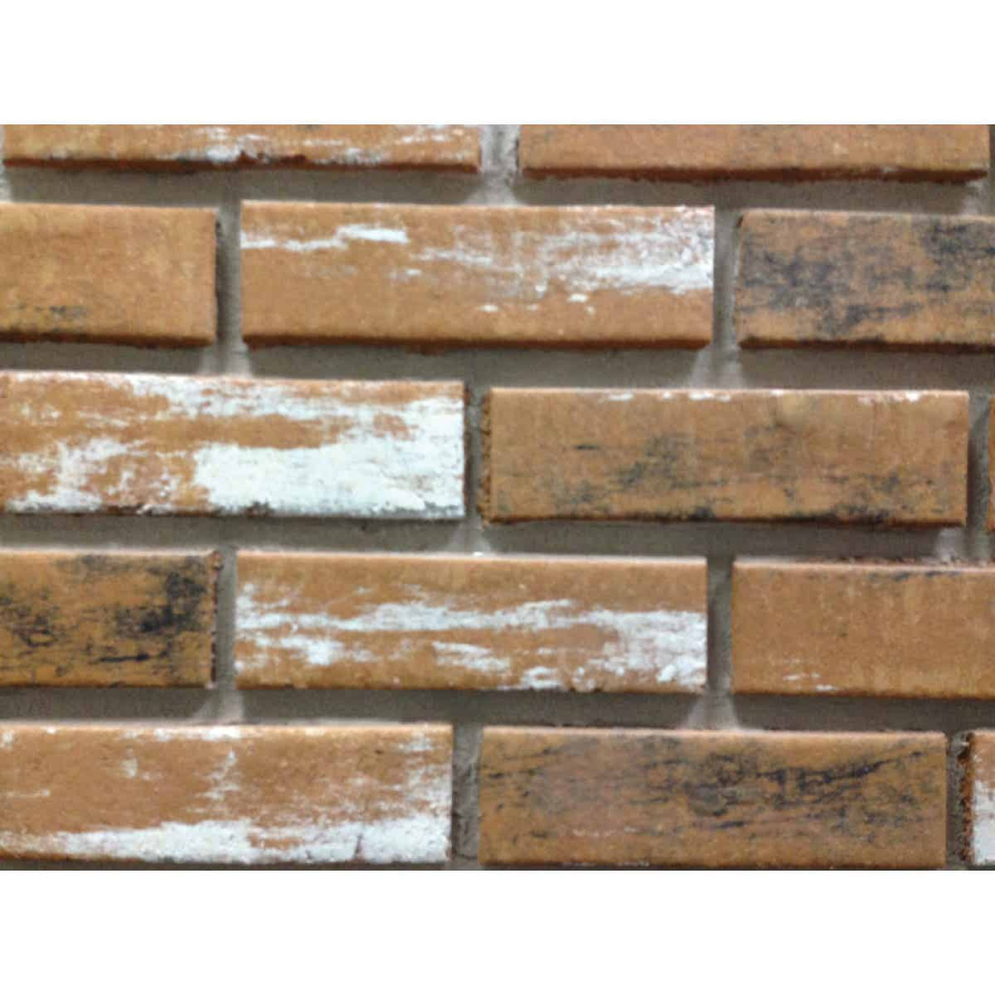 Z-Brick Inca 2-1/4 In. x 8 In. Old Chicago Facing Brick Image 1