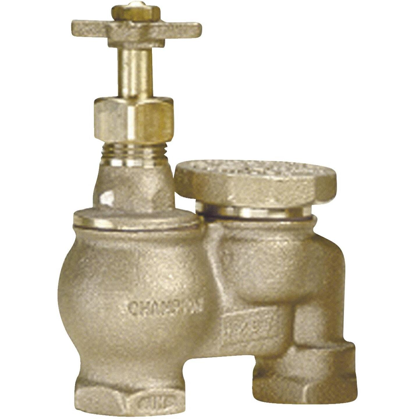 Champion 1 In. 25 to 150 psi Anti-Siphon Valve Image 1